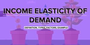 Importance of Price Elasticity of Demand | Economics